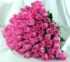 24 Pink roses in a bouquet
